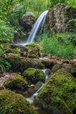 Stream in Gorge Tasnei. Baile Herculane, Romania Royalty Free Stock Images