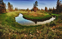Stream in Grand Teton National Park Royalty Free Stock Photography