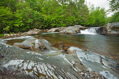 Stream, The great smoky mountains national park. Streaming little pigeon river, greenbrier Royalty Free Stock Photos