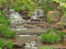 Stream in green forest. Royalty Free Stock Photos