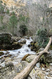 Stream in the headwaters of river Riopar world Royalty Free Stock Photo