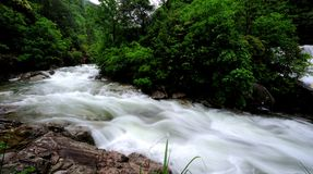 The stream after the heavy rain. ,the water turbulence, the sound of water very  huge Royalty Free Stock Photo