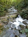 Stream in Helen GA. Downstream of Anna Ruby Falls Royalty Free Stock Photography