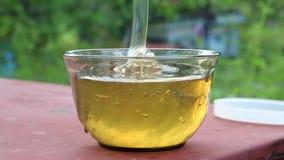 Stream of high-quality fresh honey stock video