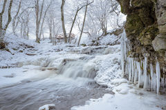 Stream with icicles Royalty Free Stock Photography