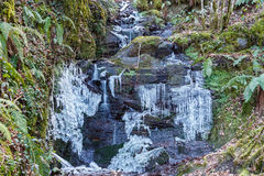 Stream with icy waterfalls. Route of the Roman canals of the Oza, Bierzo, Leon, Spain. Stock Photography