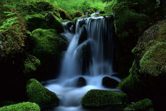 Stream In Mountain Stock Photography