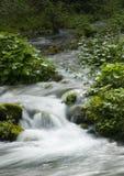 Stream In Mountains Royalty Free Stock Photos