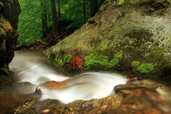 Stream in Jeseniky mountains Royalty Free Stock Photography