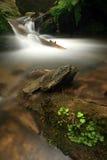 Stream in Jeseniky mountains Stock Photos
