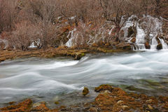 Stream in Jiuzhaigou Royalty Free Stock Photography