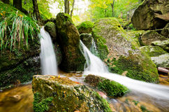 Stream in Jizera mountains, Czech Republic Stock Image