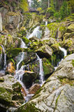 Stream in Jizera mountains, Czech Republic Royalty Free Stock Photo