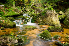 Stream in Jizera mountains, Czech Republic Stock Images