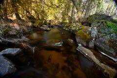 A stream just outside Havsjöleden natural reserve in Bredaryd – Sweden Royalty Free Stock Image