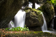 Stream. A long exposure of water flowing between the trees and rocks Stock Image