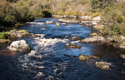 Stream in Maine Royalty Free Stock Photo