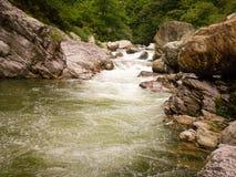 The stream royalty free stock photos