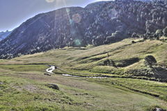 Stream and meadow in Andorra Stock Image