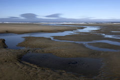 Stream Meanders to the Sea. A spring-fed stream meanders through a broad beach to the ocean on the Oregon coast Stock Images