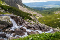 Stream in Mlynicka Valley, Slovakia Royalty Free Stock Images