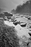 Stream in the morning. Black and white Royalty Free Stock Photography