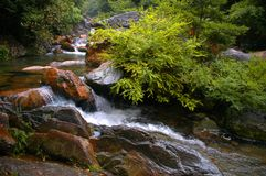 Stream in Mount Huangshan Royalty Free Stock Images