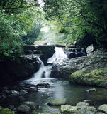 Stream in mountain Stock Photos