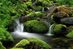 Stream in mountain Stock Images