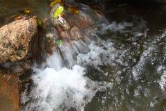 Stream in mountain Stock Photos