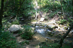 Stream. Mountain Stream flowing over rocks royalty free stock image