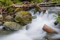 Stream in a mountain forest Royalty Free Stock Image
