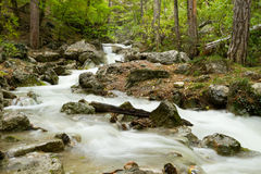 Stream of the mountain river Stock Photography