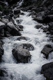 Stream of mountain river. Black-white Royalty Free Stock Photography