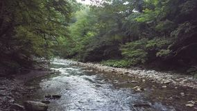 Stream of mountain river flowing on stones in summer forest aerial view stock video footage