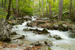 Stream of the mountain river ( long exposure ) Royalty Free Stock Photography
