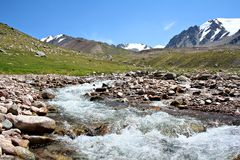 Stream of mountain river in North Tien-Shan Stock Images