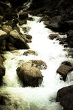 Stream of mountain river. Toned. Dramatic Royalty Free Stock Images
