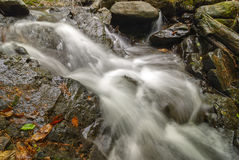 Stream of a mountain stream. The water flows through the rocks Stock Photography