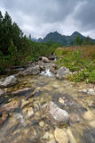 Stream in Mountains Royalty Free Stock Image