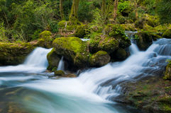 The stream in the mountains. The photo of the stream in the park of Sassenage (France) made with long exposure Royalty Free Stock Photos