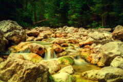 Stream in the mountains Stock Photography