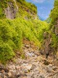 Stream in mountains, Norway. Stock Photos