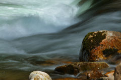 Stream in the mountains in spring royalty free stock images