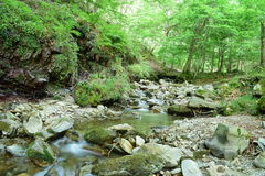 Stream movement. Stream, Lugar del Rio, La Rioja, Spain Royalty Free Stock Photography