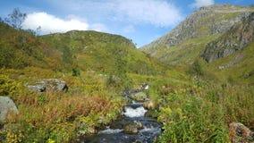 Stream at Moysalen National Park Royalty Free Stock Photography