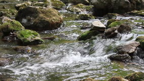 Stream nature scene stock footage