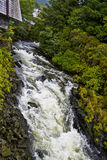 Stream near Creek Street in Ketchikan Stock Photos