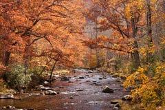 Stream near lake fontana in fall Stock Image