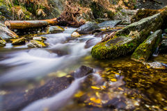 Stream in northern Italy Stock Photography
